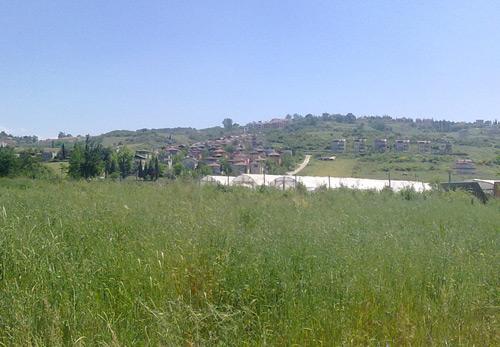 Yalova Çınarcık Koruköy'de satılık tarla